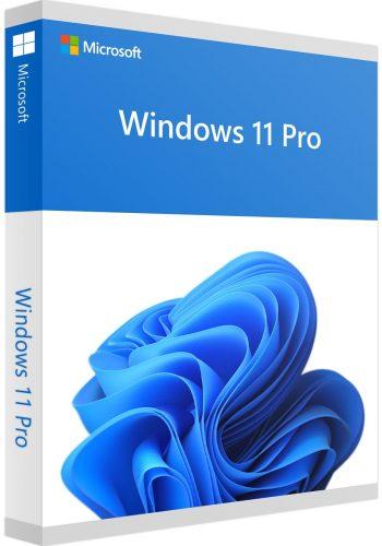 Windows_11_Pro